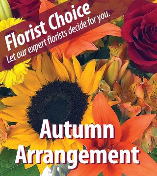 Florist Choice - Greatest