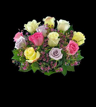 12 Multi-Color Long-Stem Roses