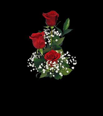 3 Red Long-Stem Roses