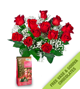 12 Red Roses FREE Vase & Chocolate Bag