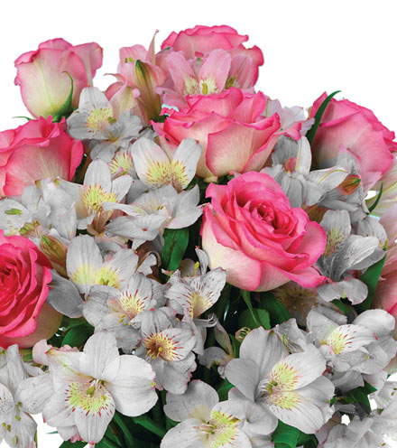 Shimmering Blush Bouquet - Greater