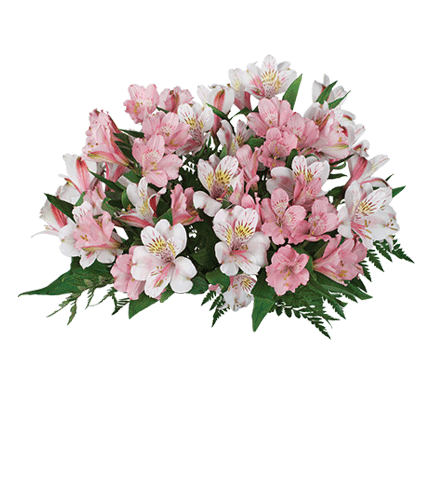 Pink & White Peruvian Lilies Bouquet - Great