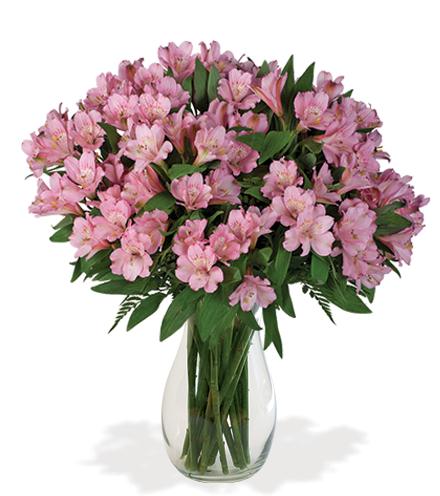 Pink Peruvian Lilies Bouquet - Greatest