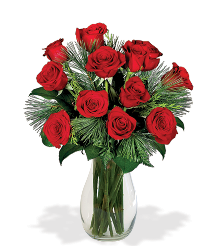 12 Red Holiday Roses