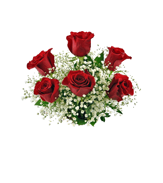 6 Red Roses with FREE Vase