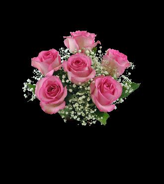 6 Pink Roses FREE Vase