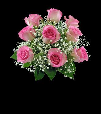 9 Pink Roses FREE Vase
