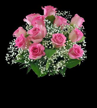 12 Pink Roses FREE Vase