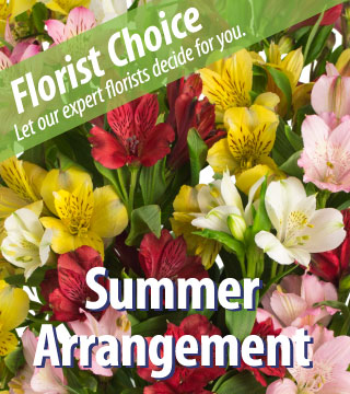 Florist Choice - Summer