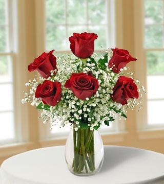 6 Red Long-Stem Roses