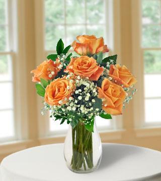6 Orange Long-Stem Roses