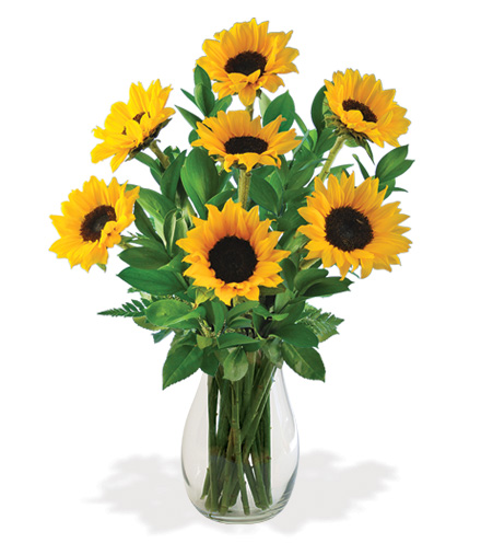 Lazy Day Sunflowers Bouquet