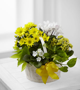 FTD® A Bit of Sunshine™ Basket