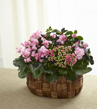 FTD® Pink Assortment Basket