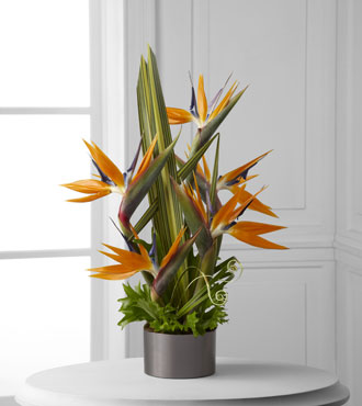 FTD® Tropical Bright™ Arrangement