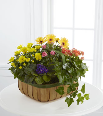FTD® Gentle Blossoms™ Basket