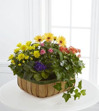 FTD® Gentle Blossoms™ Basket