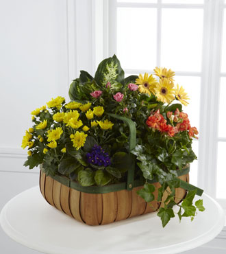 FTD® Gentle Blossoms™ Basket - Greater