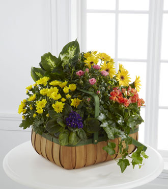 FTD® Gentle Blossoms™ Basket - Greatest