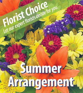 Florist Choice - Summer Deluxe - Greater