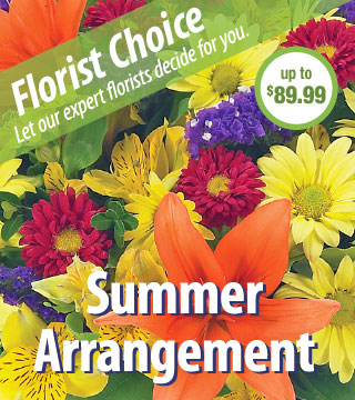Florist Choice - Summer Deluxe From  $90