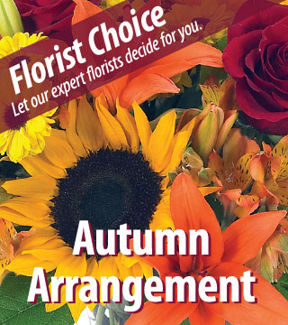 Florist Choice - Autumn Deluxe - Greater