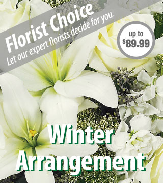 Florist Choice - Winter Deluxe From  $90