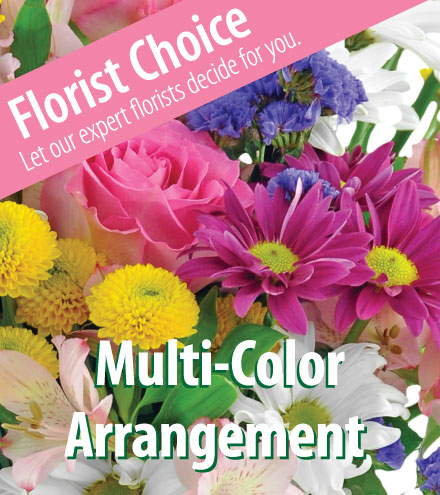 Florist Choice Multi-Color Arrangement From  $60