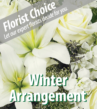 Florist Choice Winter $34.99 Bouquet