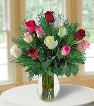 12 Multi-color Holiday Roses