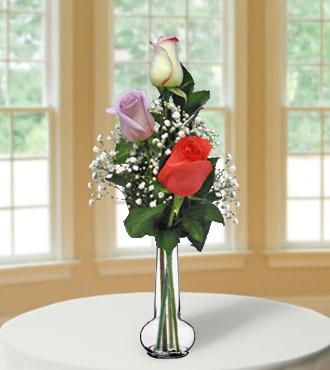 3 Multi-Color Long-Stem Roses
