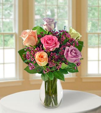 6 Pastel Long-Stem Roses
