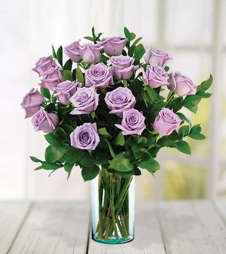 18 Lavender Roses