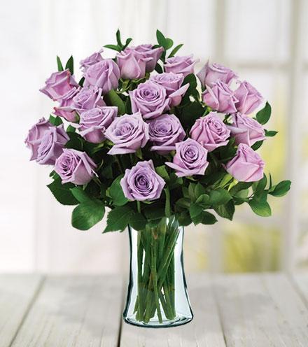 24 Lavender Roses