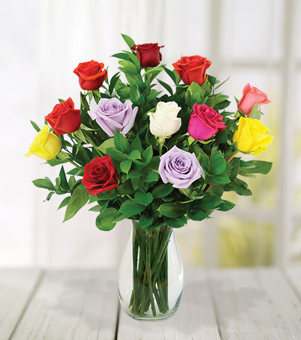 12 Multi-Color Roses