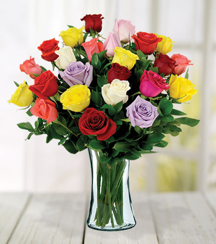 24 Multi-Color Roses
