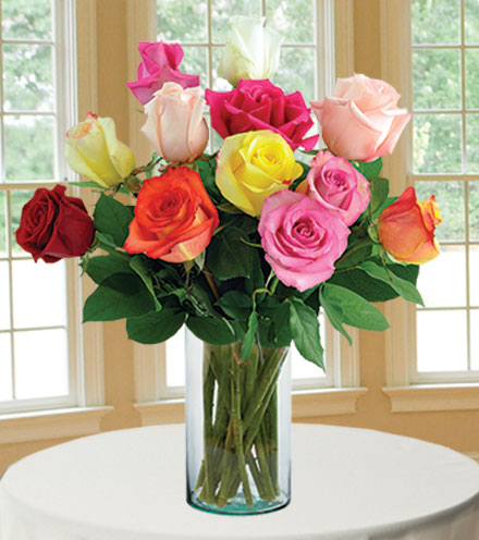 12 Delightful Roses