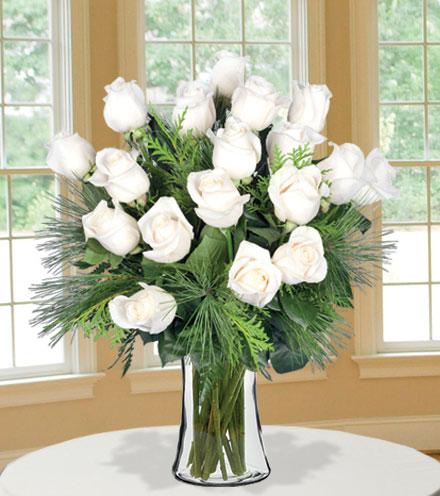 18 Merry White Roses