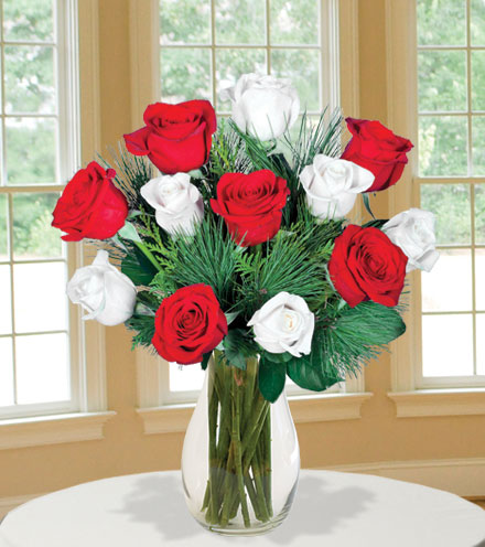 12 Merry Red & White Roses