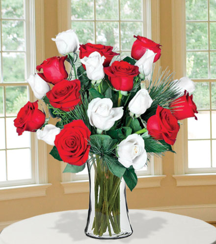 18 Merry Red & White Roses