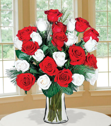 24 Merry Red & White Roses