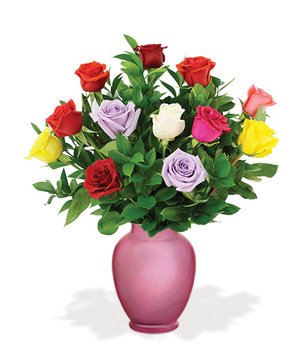 12 multi colored roses with pink vase blooms today for Dual color roses