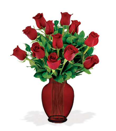 12 Red Roses with Red Vase