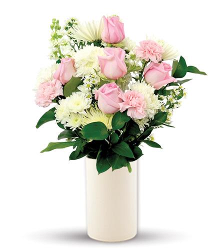 Treasured Love Pink & White
