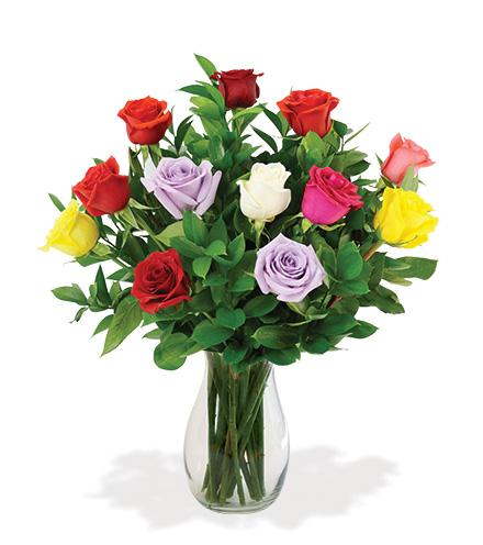 12 Artisan Roses - Multi-Colored