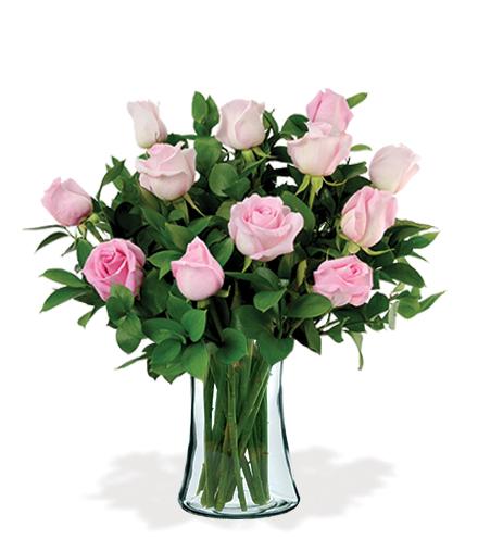 12 Artisan Roses - Pink