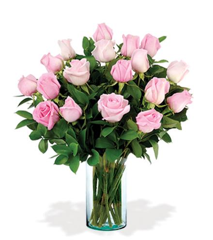 18 Artisan Roses - Pink
