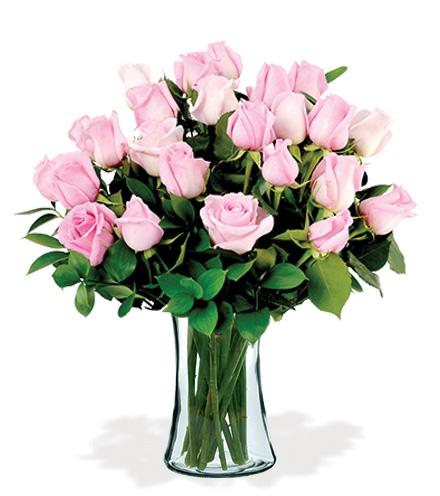 24 Artisan Roses - Pink