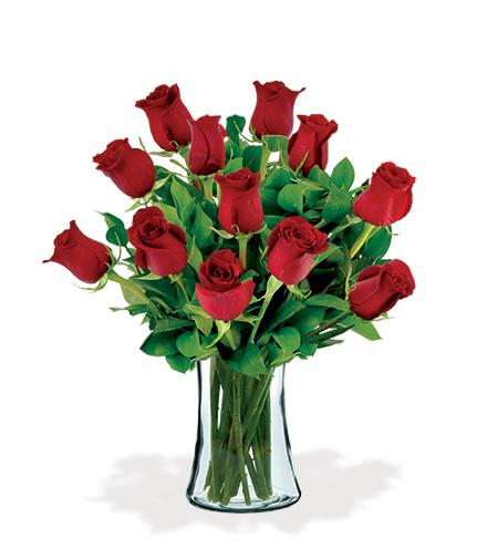 12 Artisan Roses - Red