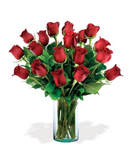 18 Artisan Roses - Red